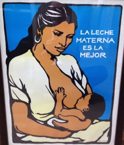La Leche Materna Es la Mejor/ Mother's Milk is Best Reproduction of original silkscreen by Jane Norling